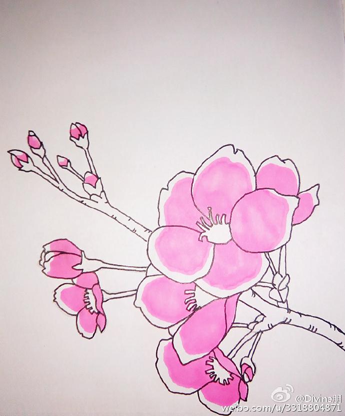 桃花简笔画教程图片 水彩上色桃花的画法 好看的桃花怎么画