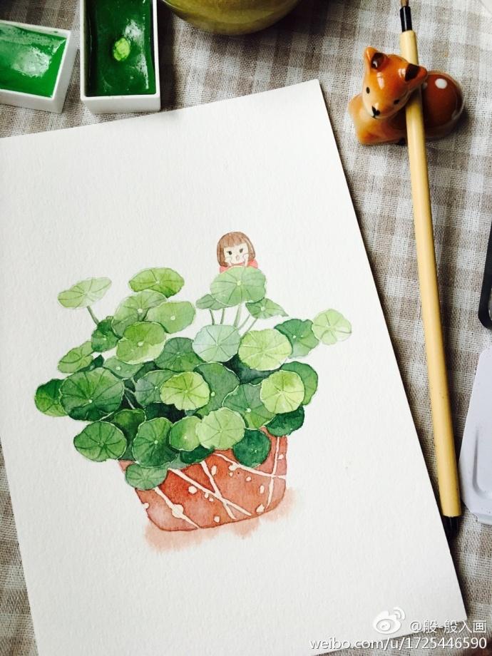 水彩铜钱草盆栽手绘教程图片 绿意清新的绿色盆栽植物